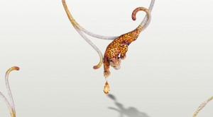 damisa masterpiece sicis necklace